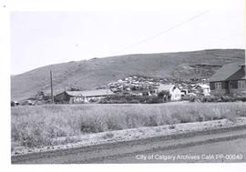 Nose Creek Valley, 1960