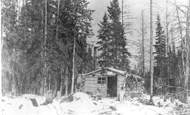 Trappers cabin, Coal Branch.
