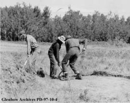 Stripping the sod, Cluny Earthlodge Village archaeological excavation, Blackfoot (Siksika) reserv...