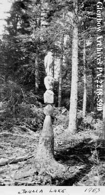 Totem pole at Jahala Lake, Saskatchewan.