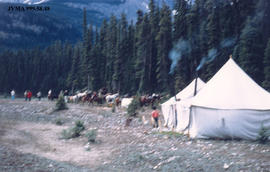 Whirlpool Camp, Jasper National Park, Alberta.