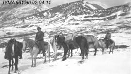 [Group with horses on trail]