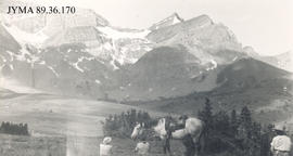 Women and horses taking a rest, Jasper National Park, Alberta.