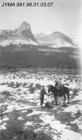 [Horse carrying Moose trophy], Alberta