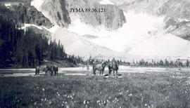 Horses and riders in mountain meadow, Jasper National Park, Alberta.