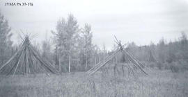Teepee and sweathouse frames near Jarvis Lake, Alberta.