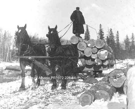Team of horses pulling logs, Ingolf, Ontario