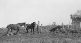 Laurence Banting in the paddock, Red Deer