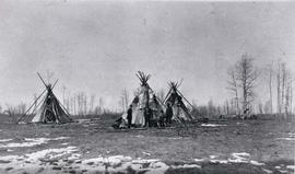 Beaver Camp On The Beaverlodge River