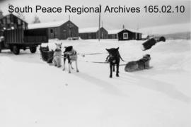 Dogsled at Operation Sweetbriar, Yukon.