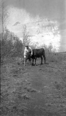 Indian Agent with Cow
