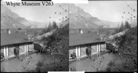 (Upper Hot Springs?), stereo : [Cave and Basin bathhouse pool]