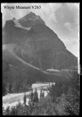 Untitled : [train in Kicking Horse Valley at foot of Mount Stephen]