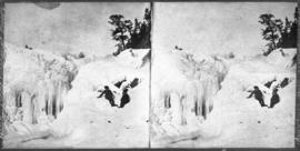 [Children of Elliott Barnes on Bow Falls, Banff]