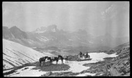 Barnes family with pack train at Pipestone Pass on trip to Kootenay Plains