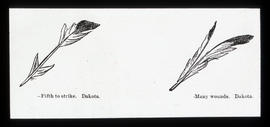 [Illustration of Dakota war feather designs]