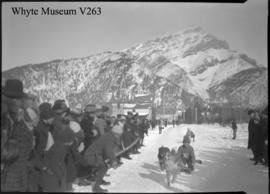 Banff Winter Carnival, dog, toboggan race