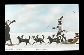Dog cariole : courtesy H.B.Co. [Hudson's Bay Company] - [illustration]