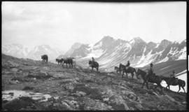 Barnes family with pack train on trail near Pipestone Pass