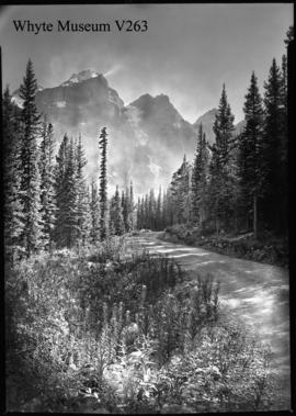 Road to Moraine Lake