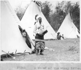 A Chief of the Stony tribe / 27343 :  [Stoney Indians]