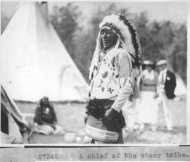 A Chief of the Stony tribe / 27342 :  [Stoney Indians]