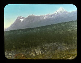 Mt. [Mount] Geikie from Athabasca R. [River]
