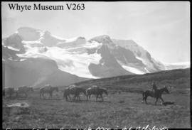 Trip to Columbia Icefield, Sunwapta Pass & Mt. Athabasca