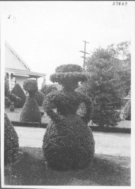 The gardens of W. J. Pendray residence in Victoria. The trimming of these trees into the shape of...
