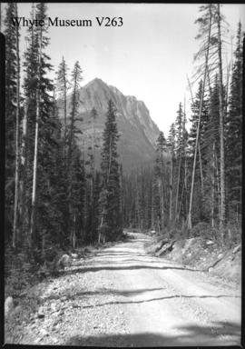 Windermere Road, Mt. Whymper