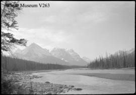 Icefield trip