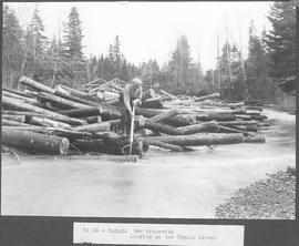 Canada. New Brunswick. Logging on the Charlo River / CN55