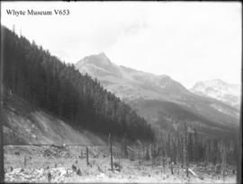 Mount Cheops from lawn in front of Glacier House, Glacier trip 1896 (No.80). 1898